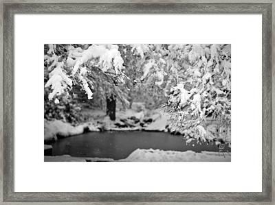 Pond Mystere Framed Print by Mike Reid