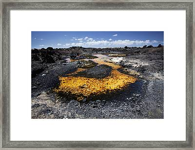 Pond On Kanaio Coast Framed Print by Jenna Szerlag