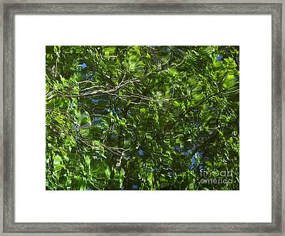 Pond Reflection 3 Framed Print by Janeen Wassink Searles
