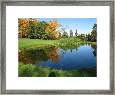 Pond Reflections Framed Print by Leontine Vandermeer