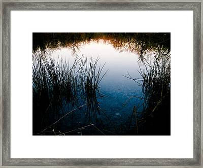 Pond Reflections Framed Print by Susan Adams