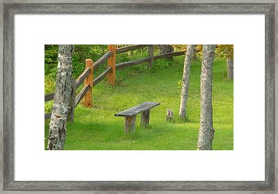 Pondering Bench Framed Print by Michael Carrothers