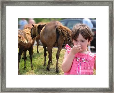 Ponies In Chincoteague Framed Print by Julie VanDore