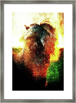 Framed Print featuring the digital art Pony by Andrea Barbieri