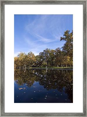 Pool Side Framed Print