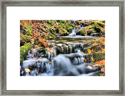 Pooling Resources Framed Print by JC Findley