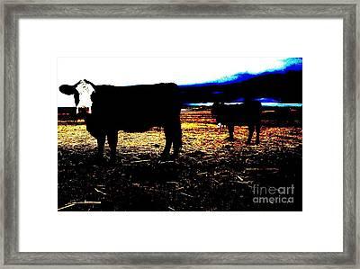 Pop Art Calves Framed Print by Therese Alcorn