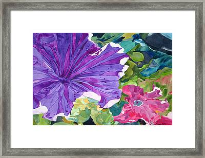 Popping Petunias Framed Print