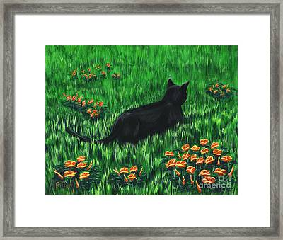 Poppy Cat Framed Print