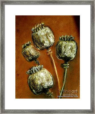 Poppy Seed Heads Framed Print by Anna Folkartanna Maciejewska-Dyba