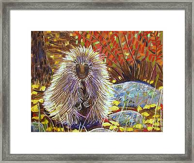 Porcupine On The Trail Framed Print by Harriet Peck Taylor
