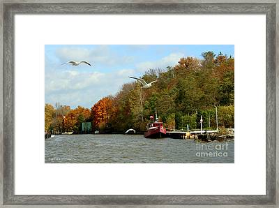 Framed Print featuring the photograph Port Dover Harbour by Barbara McMahon
