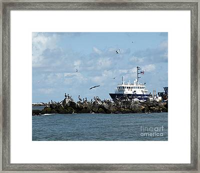 Port Fourchon Life Framed Print