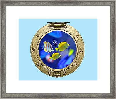Porthole Of Fish Framed Print