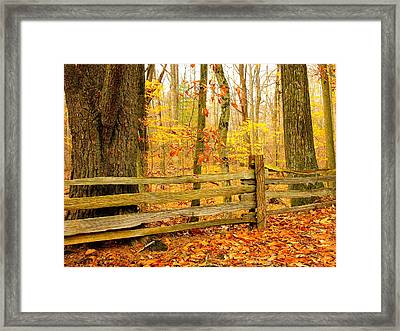 Post And Rail Framed Print