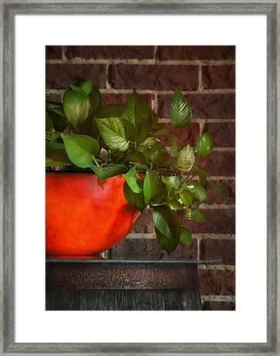 Pot Of Greens Framed Print by Brenda Bryant
