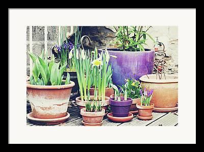 Sunlight On Pots Photographs Framed Prints