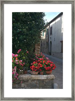 Pots Of Flowers Add Color To An Old Framed Print