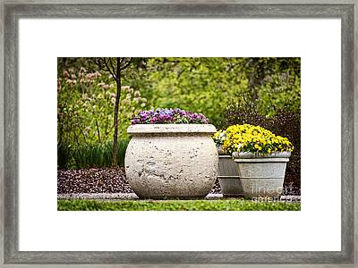 Framed Print featuring the photograph Pots Of Pansies by Cheryl Davis
