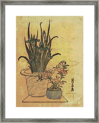 Potted Irises And Pinks Framed Print by Padre Art