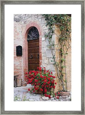 Potted Plant In Front Of Arched Doorway Framed Print by Jeremy Woodhouse