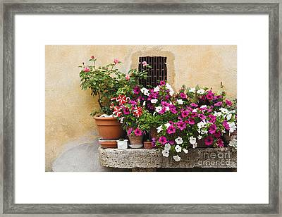 Potted Plants On Stone Bench Framed Print