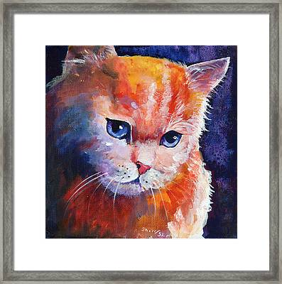 Pouting Kitty Framed Print by Sherry Shipley
