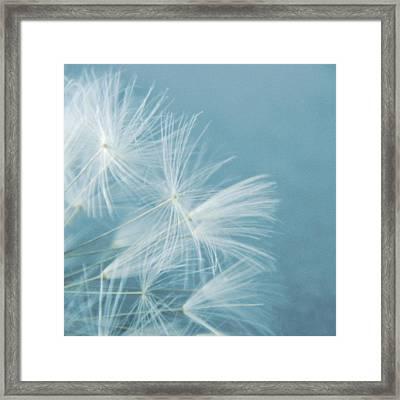 Powder Blue Framed Print by Sharon Lisa Clarke