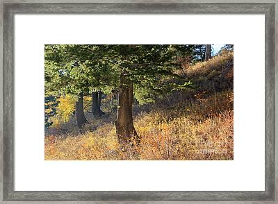 Powder Mountain Sunset  Framed Print