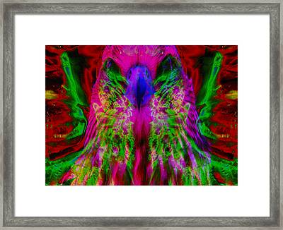 Power Hawk 2 Framed Print by Colleen Cannon