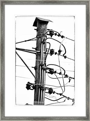Power To The People Framed Print by David Ridley