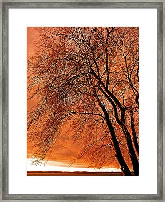 Powerful Morning ... Framed Print by Juergen Weiss