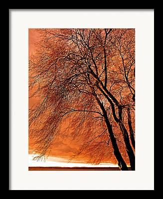 Jahreszeit Framed Prints