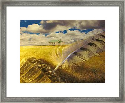Prairie Feathers Framed Print by Lori  Secouler-Beaudry