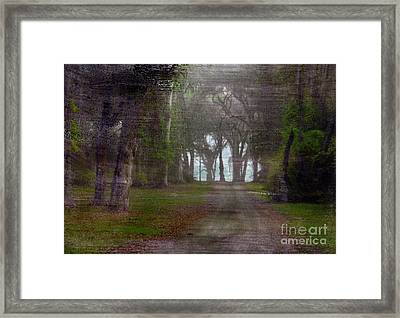 Prairie Road Framed Print