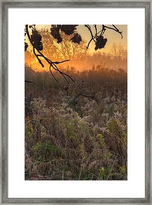 Prairie Sunrise Framed Print by Steve Gadomski