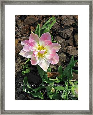 Praise And Celebrate Life Framed Print by Ausra Huntington nee Paulauskaite