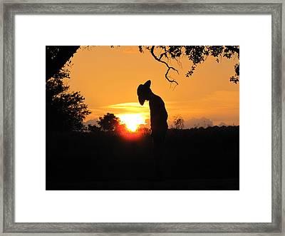 Praying Framed Print by Barry Moore