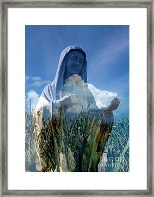 Praying For Rain Framed Print by Rick Rauzi