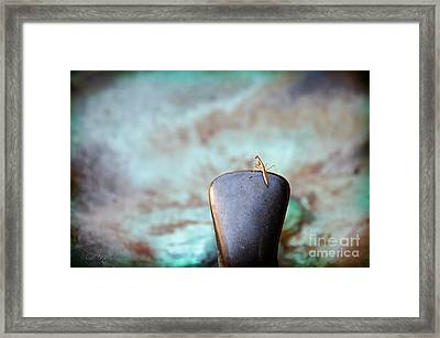 Praying For Water 2 Framed Print by Andee Design