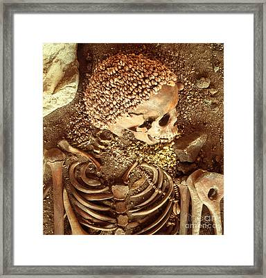 Prehistory Skeletal Remains Framed Print by Tomsich