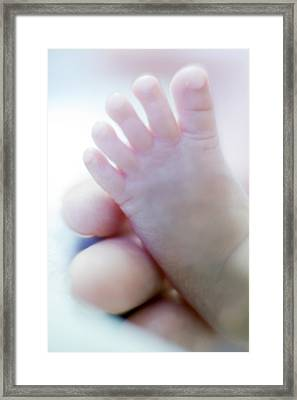 Premature Baby's Foot Framed Print by