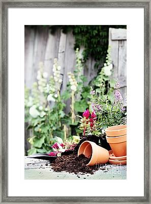Preparing Flower Pots Framed Print by Stephanie Frey