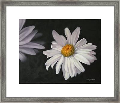 Pretty Daisy Framed Print by Candy Prather