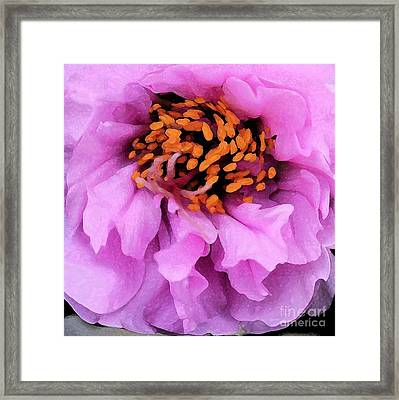 Pretty In Pink - Abstract Flower Framed Print