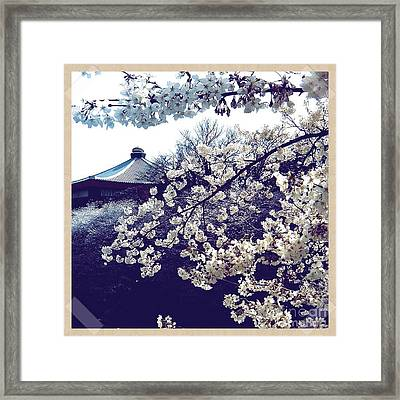 Pretty In Purples Framed Print