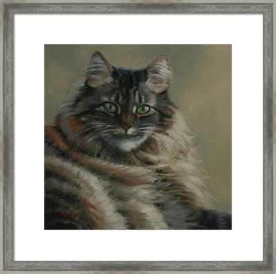 Pretty Kitty Framed Print