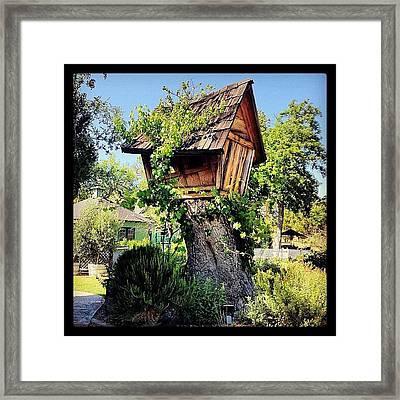 Pretty Much My #dreamhome. #tree Framed Print