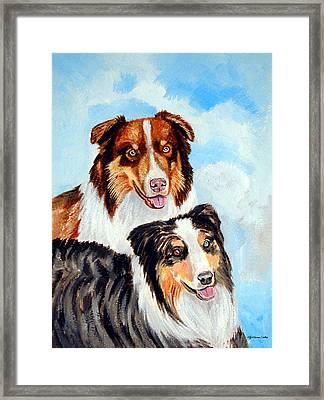 Pretty Pair - Australian Shepherd Framed Print by Lyn Cook