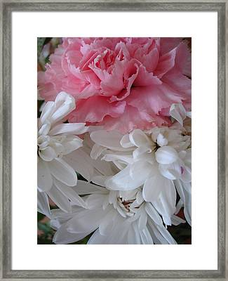 Pretty Pastel Petals Framed Print by Yvonne Scott